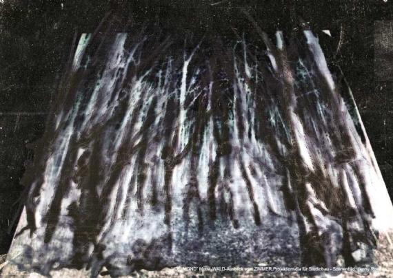 Projektion Wald