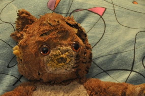 Teddy Toni